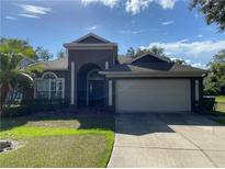 View 11106 Avery Oaks Dr Tampa FL
