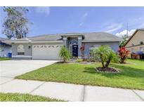 View 11421 Glenmont Dr Tampa FL