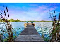 View 21550 Draycott Way Land O Lakes FL