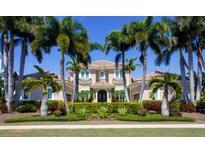 View 611 Balibay Rd Apollo Beach FL