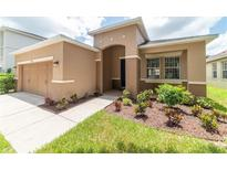 View 11244 Running Pine Dr Riverview FL