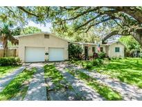 View 3814 W San Rafael St Tampa FL