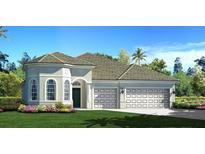 View 12421 Brick Cobblestone Dr Riverview FL