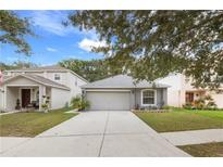 View 13821 Gentle Woods Ave Riverview FL