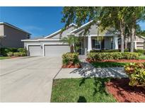 View 14906 Swiftwater Way Tampa FL