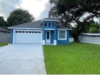 View 8910 Oren Ave Tampa FL