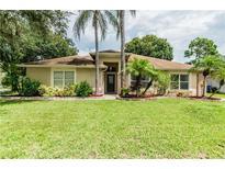 View 5804 Piney Lane Dr Tampa FL