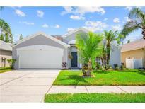 View 4246 Pine Isle Dr Lutz FL
