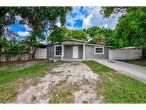 View 4631 Driesler Cir Tampa FL