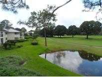View 29147 Bay Hollow Dr # 3222 Wesley Chapel FL