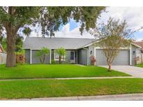 View 16121 Pebblebrook Dr Tampa FL