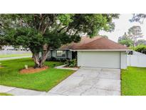 View 15819 Crying Wind Dr Tampa FL
