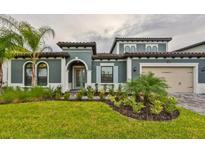 View 18201 Pine Hammock Blvd Lutz FL
