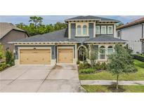 View 18003 Pine Hammock Blvd Lutz FL