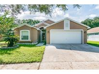 View 5630 Tughill Dr Tampa FL