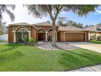 View 18206 Stillwell Ln Tampa FL