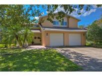 View 4602 Landscape Dr Tampa FL