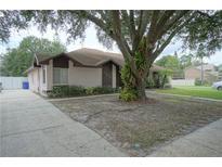 View 3435 Laurel Dale Dr Tampa FL