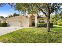 View 18214 Stillwell Ln Tampa FL