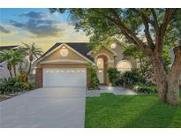 View 14509 Thornfield Ct Tampa FL