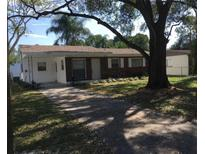 View 8607 Chinaberry Dr Tampa FL