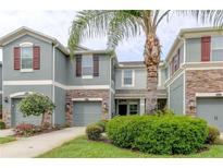 View 12569 Streamdale Dr Tampa FL