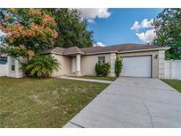 View 6919 Wildwood Oak Dr Tampa FL