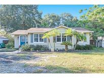 View 1427 E Comanche Ave Tampa FL