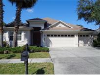 View 8338 Old Town Dr Tampa FL