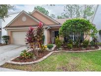 View 9403 Willow Cove Ct Tampa FL