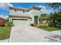 View 10411 Lucaya Dr Tampa FL