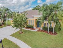 View 10239 Meadow Crossing Dr Tampa FL