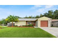 View 13907 Fullerton Dr Tampa FL