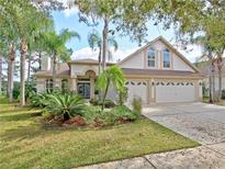 View 10155 Whisper Pointe Dr Tampa FL