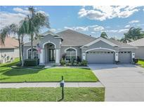 View 18113 Royal Forest Dr Tampa FL