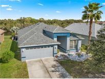 View 8736 Sandy Plains Dr Riverview FL
