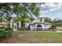 View 7217 Wareham Dr Tampa FL