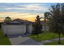 View 13306 Wellington Hills Dr Riverview FL