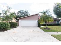 View 15537 Timberline Dr Tampa FL
