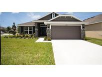 View 14919 Imperial Purple Ln Wimauma FL