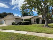 View 15708 Pony Pl Tampa FL
