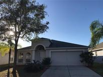 View 7347 Parkersburg Dr Wesley Chapel FL