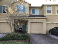 View 17544 Stinchar Dr Land O Lakes FL