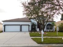 View 9612 Wydella St Riverview FL