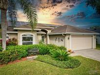 View 15102 Willowdale Rds Tampa FL