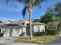 View 10115 Mowry Ln Tampa FL