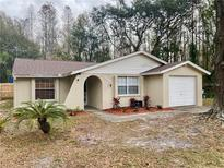 View 16131 Manorwood Cir Tampa FL