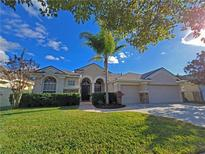 View 12822 Castlemaine Dr Tampa FL