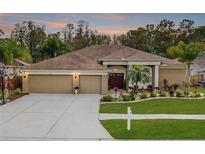 View 5042 Silver Charm Ter Wesley Chapel FL