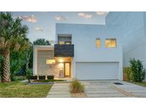 View 1328 W Fig St Tampa FL